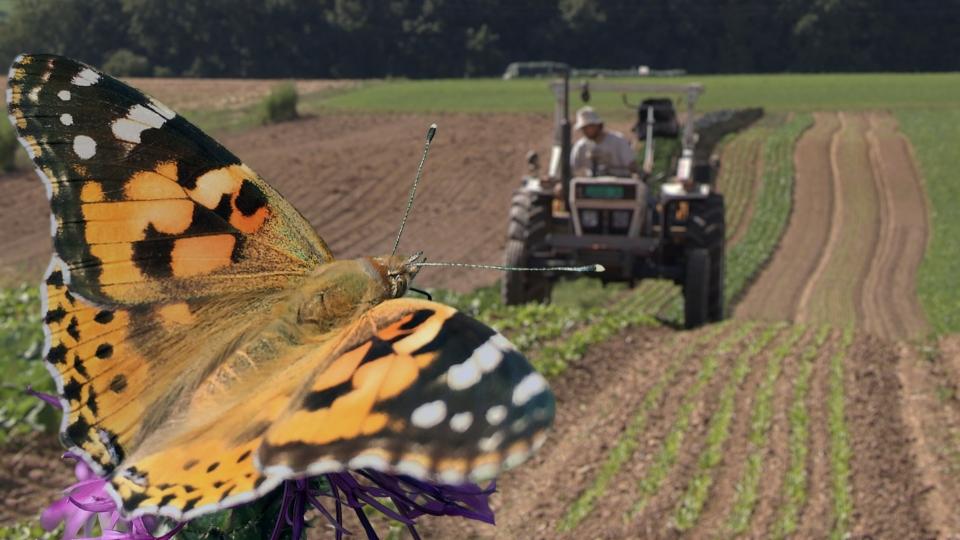 Landwirtschaft – mit der Natur!