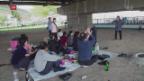 Video «Freudentag in Pjöngjang» abspielen