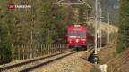 Video «Bündner Bär von Zug überfahren» abspielen