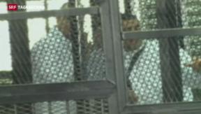 Video «Prozess gegen Al-Jazeera-Journalisten in Ägypten» abspielen