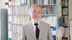 Video «Medizin-Nobelpreis geht an Japan» abspielen
