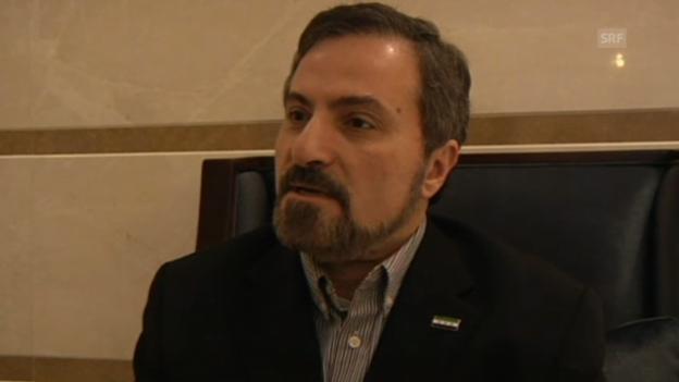 Video «Syrischer Oppositioneller zur Rolle der Regierung» abspielen