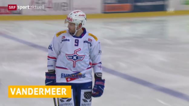 Video «Eishockey: 6 Spiele Sperre für Jim Vandermeer («sportaktuell»)» abspielen