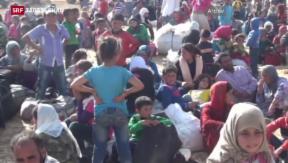 Video «IS-Chefs sollen vor Strafgerichtshof» abspielen