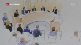 Video «Urteil im An'Nur-Prozess» abspielen