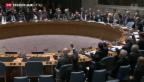 Video «Unterschiedliche Reaktionen auf UNO-Resolution» abspielen