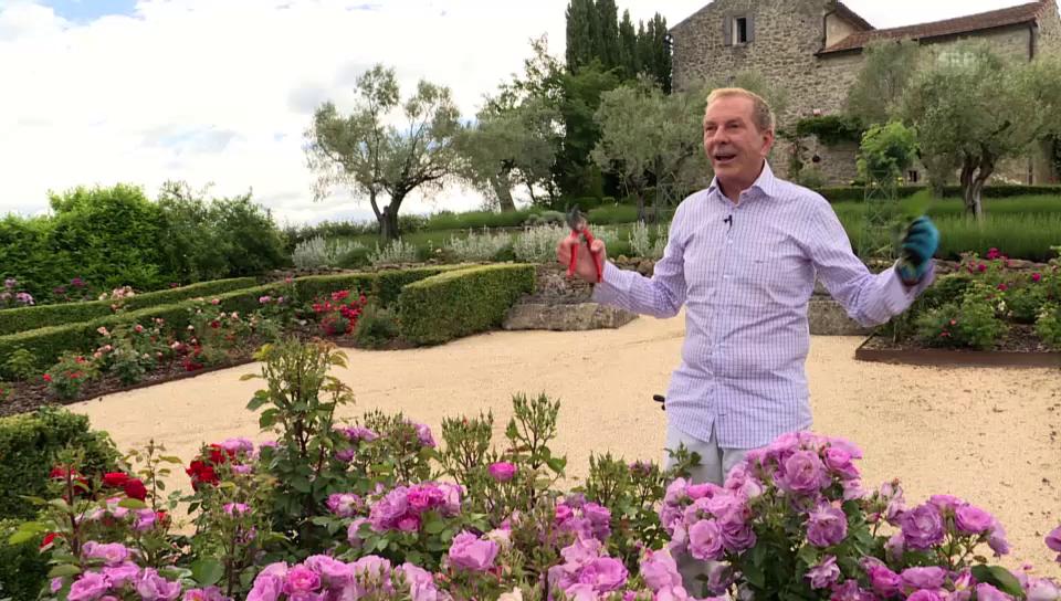 «Glanz & Gloria blüht auf»: Folge 3 mit Kurt Aeschbacher