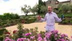 Video ««Glanz & Gloria blüht auf»: Folge 3 mit Kurt Aeschbacher» abspielen
