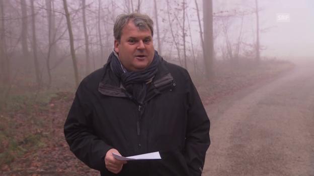 Video «Waldspaziergang mit Mike Müller» abspielen