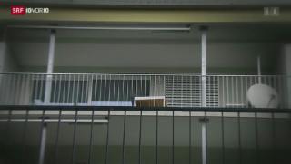 Video «Schweizer Terrorzellen – eine Spurensuche» abspielen