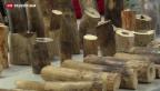 Video «Rekordfund am Zürcher Flughafen» abspielen