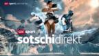 Video «Olympia: Das SRF-Sotschi-Signet» abspielen