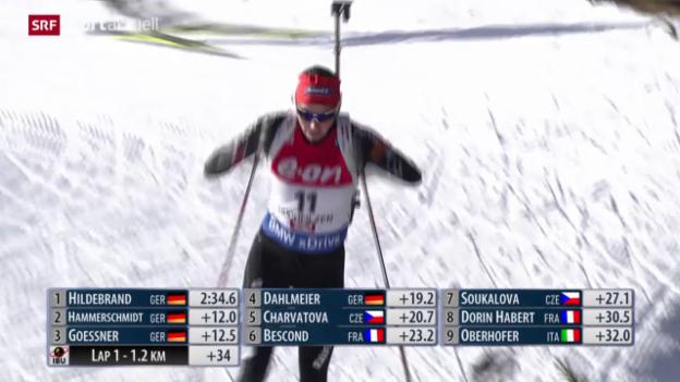 Video «Wintersport-News II» abspielen