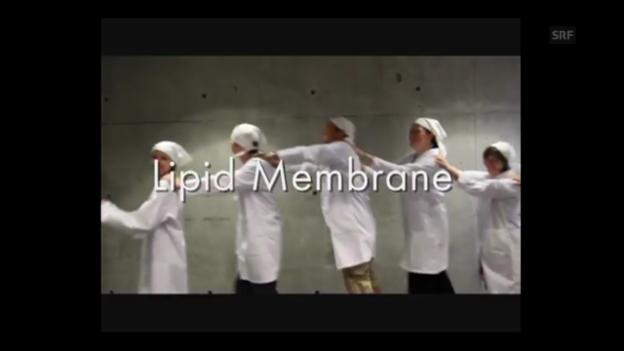 Video «Transport in Zellen – erklärt im Tanzvideo der Uni Basel» abspielen