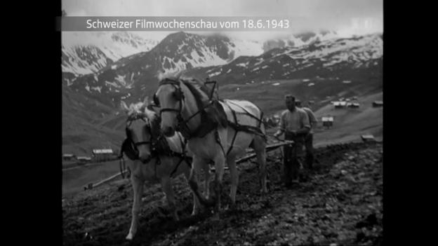 Video «Nummer 148 vom 18.6.1943» abspielen