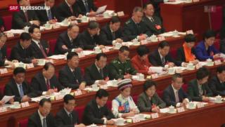 Video «Wo steht China in der Krim-Krise?» abspielen
