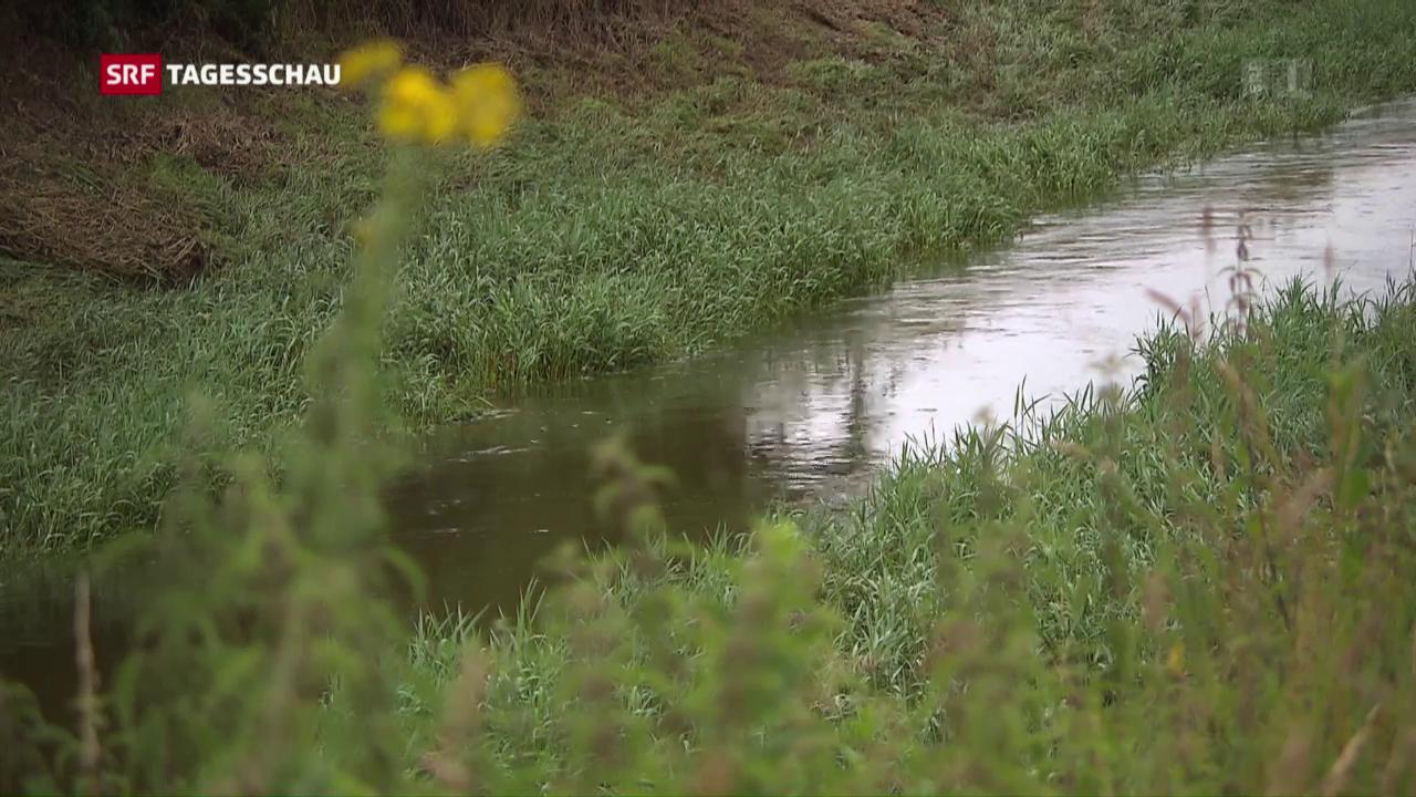 Schweizer Wasserqualität: es geht noch besser