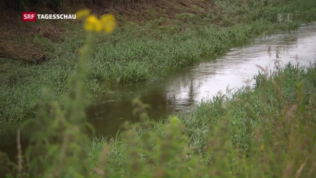 Video «Schweizer Wasserqualität: es geht noch besser» abspielen