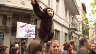 Video «Hirnforschung mit Affen: Der Aufschrei der Tierschützer» abspielen