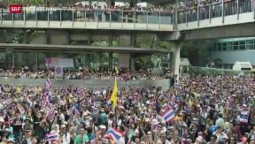 Video «Grossdemonstrationen in Thailand» abspielen