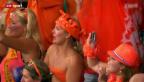 Video «WM 2014: Rückblick Niederlande-Costa Rica» abspielen