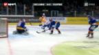 Video «Eishockey: ZSC Lions - Kloten» abspielen