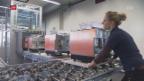 Video «Gute Wachstumszahlen für die nächsten zwei Jahre» abspielen