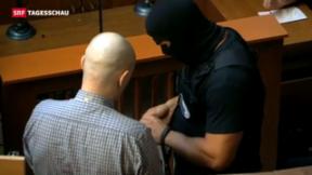 Video «Langjährige Haftstrafen für Mordserie an ungarischen Roma » abspielen