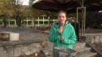 Video «Traumberuf Landschaftsgärtnerin» abspielen