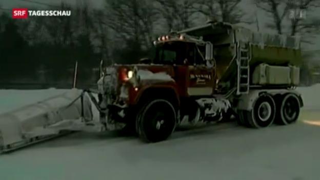 Video «Schneesturm «Nemo» legt US-Ostküste lahm» abspielen
