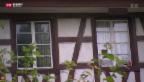 Video «Schwierige Wohnungssuche im Asylwesen» abspielen