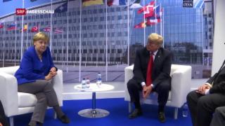 Video «Misstöne an Nato-Gipfel» abspielen