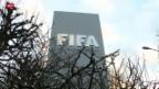 Video «Blatter sagt vor Fifa-Ethikkommission aus» abspielen