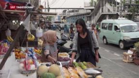 Video «Entwicklung in Schwellenländern» abspielen