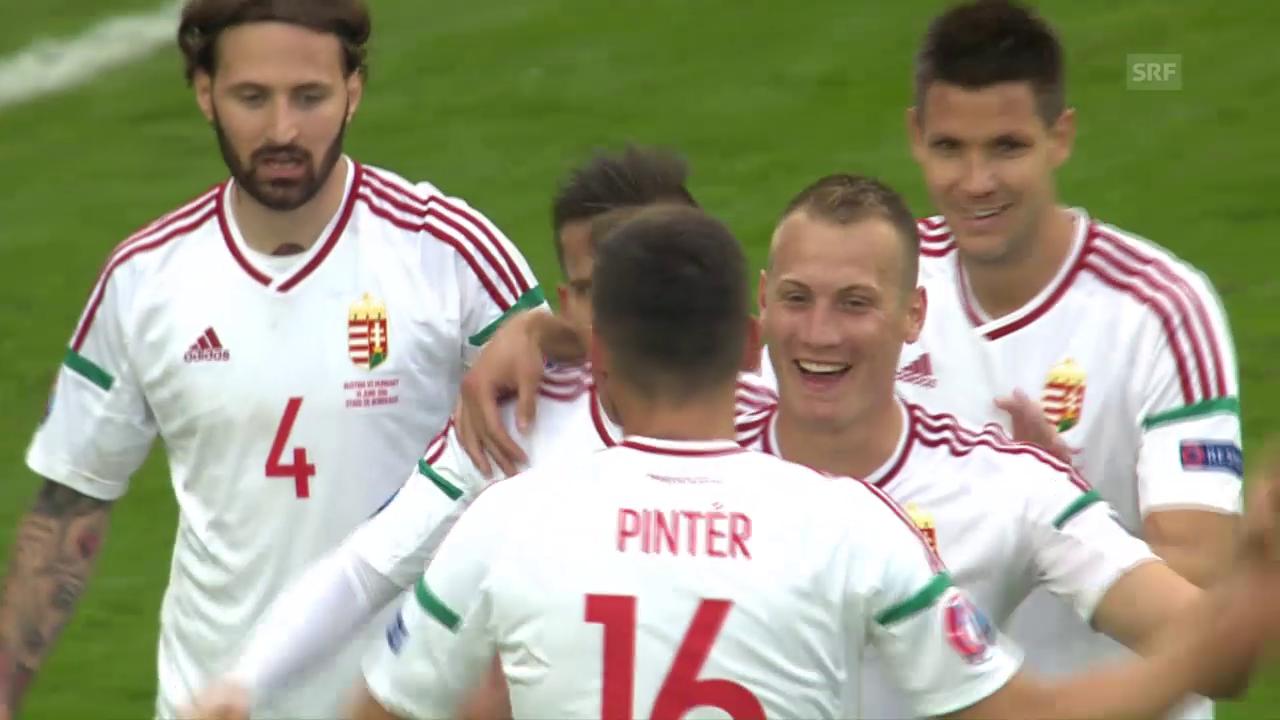Underdog Ungarn überrascht Österreich