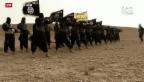Video «Wer ist ISIS?» abspielen