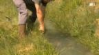 Video «Walliser Suonen: Jahrhundertealte Bewässerungssysteme» abspielen