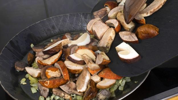 Pilzvergiftung – Auch Speisepilze haben es in sich