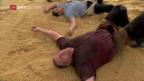 Video «Stucki bodigt die Konkurrenz am Unspunnenfest» abspielen