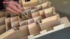 Video «Haus für Allergiker» abspielen