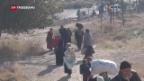 Video «Schwerste Niederlage syrischer Rebellen» abspielen