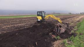 Video «Teure Landwirtschaft auf Moorböden» abspielen