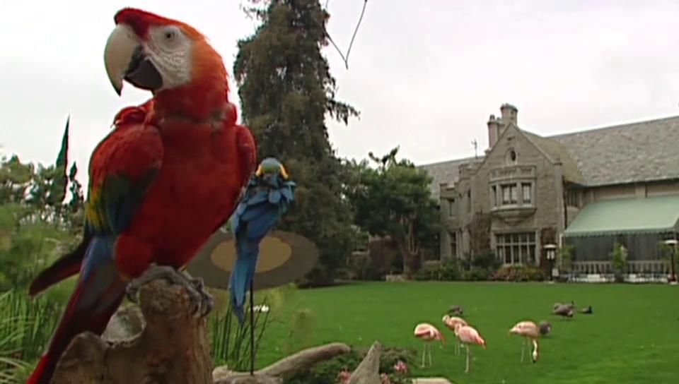 Playboy-Mansion soll verkauft werden