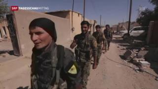 Video «IS aus ehemaliger Hochburg Rakka vertrieben» abspielen
