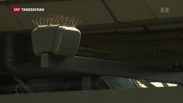 Video «SBB will Lautsprecherdurchsagen reduzieren» abspielen