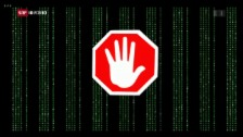 Video «FOKUS: Umstrittene Netzsperren» abspielen