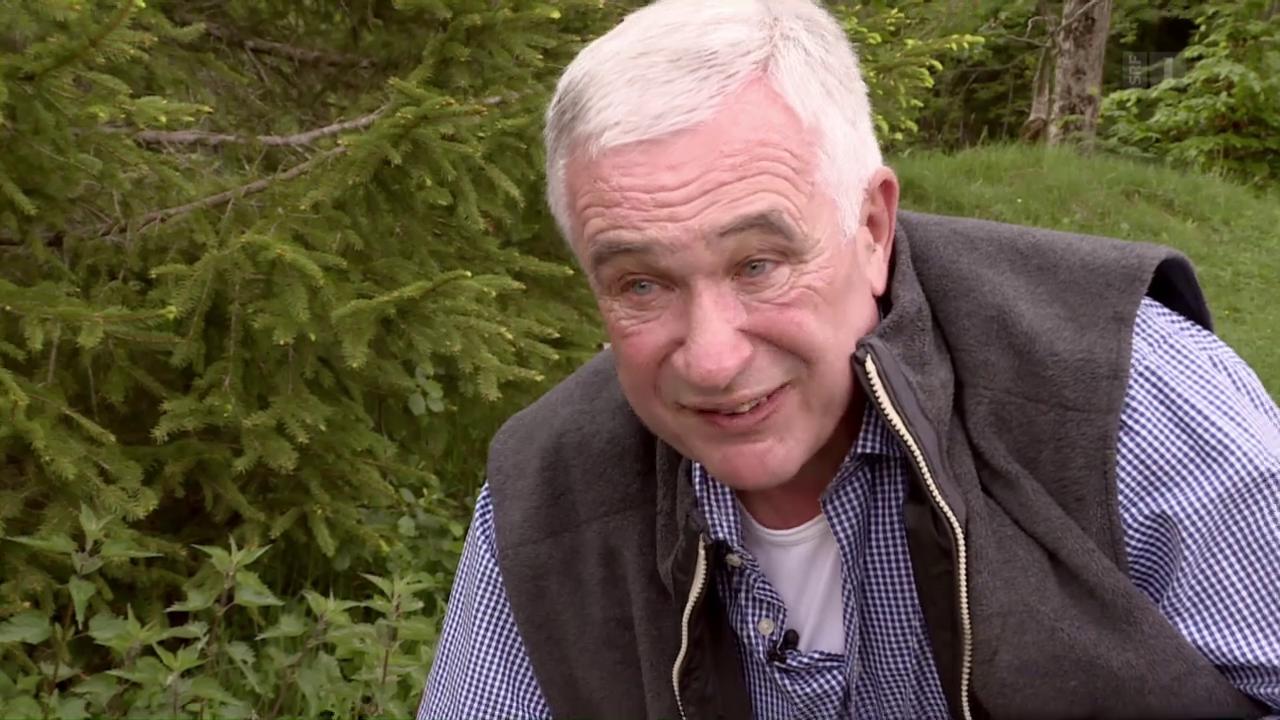 Hanspeter Latour: Auf Vogeljagd im eigenen Garten