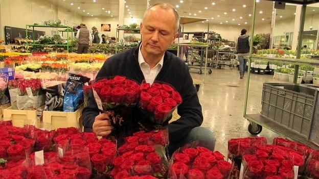 Reportage aus der Blumenbörse Zürich