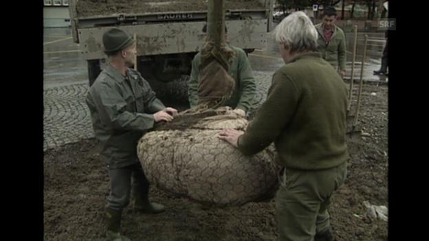 Video ««Eine neue Linde wird gepflanzt», Schweiz aktuell, 27.11.1990» abspielen