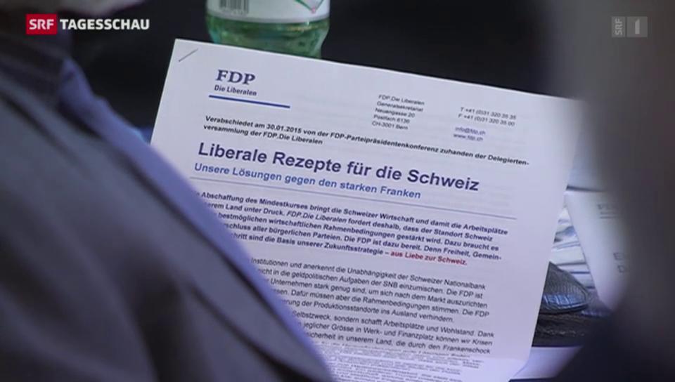 Frankenstärke dominiert FDP-Delegiertenversammlung
